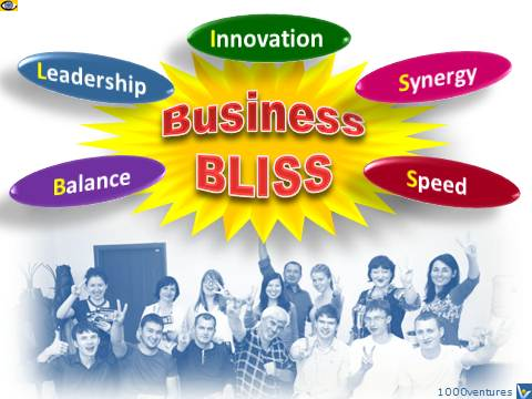 Great Company: BUSINESS BLISS - balance, leadership, innovation, synergy, speed